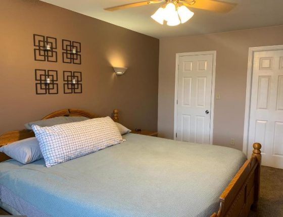 bed sitting beneath ceiling fan and modern wall decorations