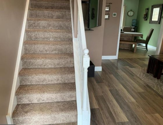 carpeted stairs leading to second floor sitting next to hardwood floor