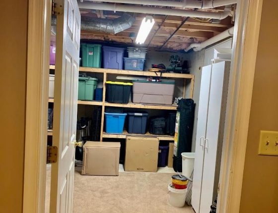 storage section of basement in home for sale